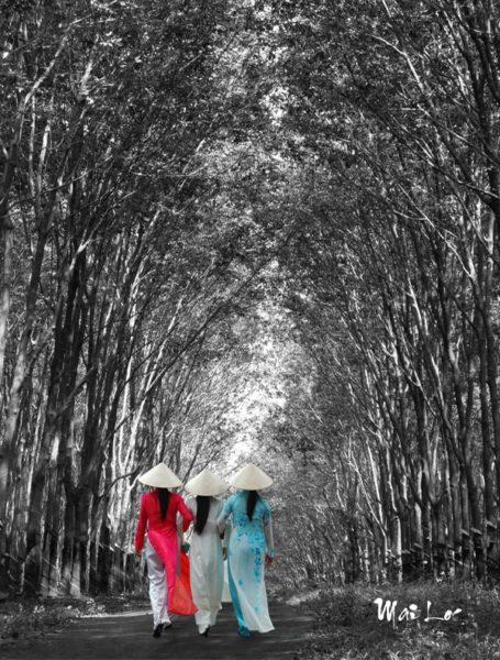 Dreaming path